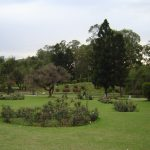 india-chandigarh-rose-garden