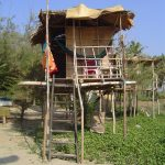 india-goa-morjim-beach-coco-hut