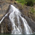 india-goa-dudhsagar-falls