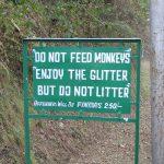 india-kasauli-enjoy-the-glitter