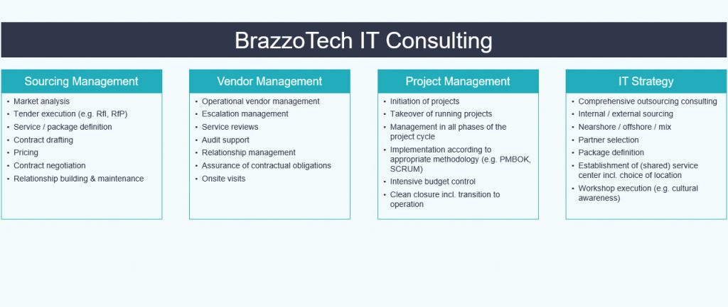 IT Strategy Outsourcing & Vendor & Project Management