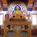 india-dharamsala-mcloed-ganj-buddha