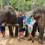 thailand-khao-sok-elephant-sanctuary