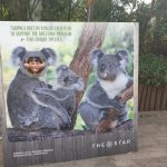 australia-sydney-taronga-zoo