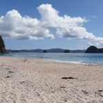 new-zealand-hahei-beach
