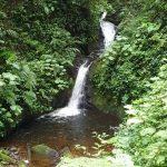 costa-rica-monteverde-cloud-forest